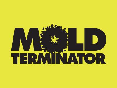 MOLD TERMINATOR INC